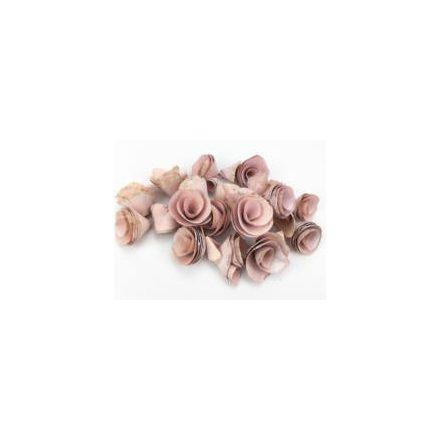 Háncsvirág - világos rózsaszín