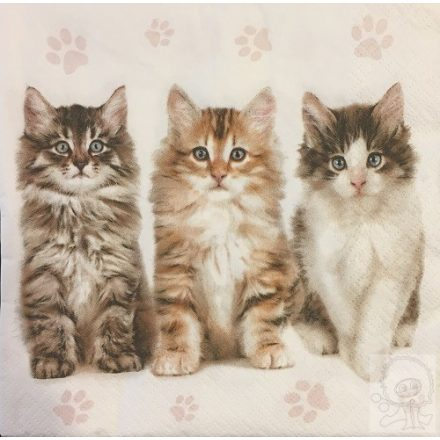 Állatos szalvéta - Három cica