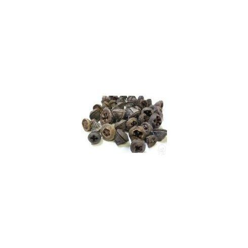 Eukaliptusz termés terméscsomag