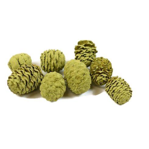Termés csomag - Meridianum - oliva