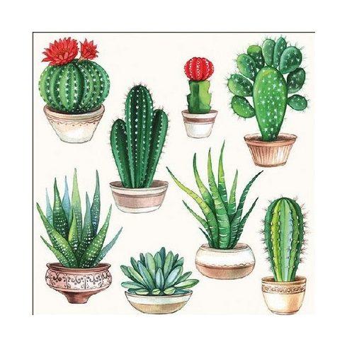 Utazásos szalvéta - Kaktuszok