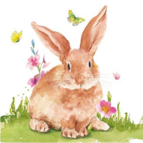 Húsvéti szalvéta  - Mr Rabbit